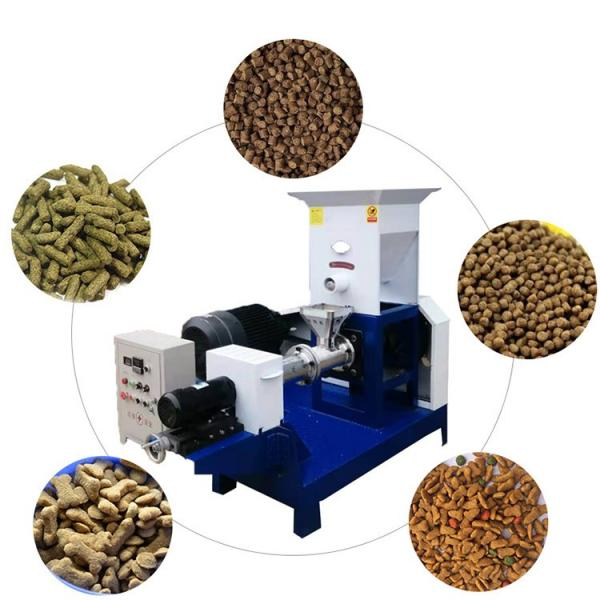 800kg/H Automatic Floating Fish Feed Pellet Making Machine